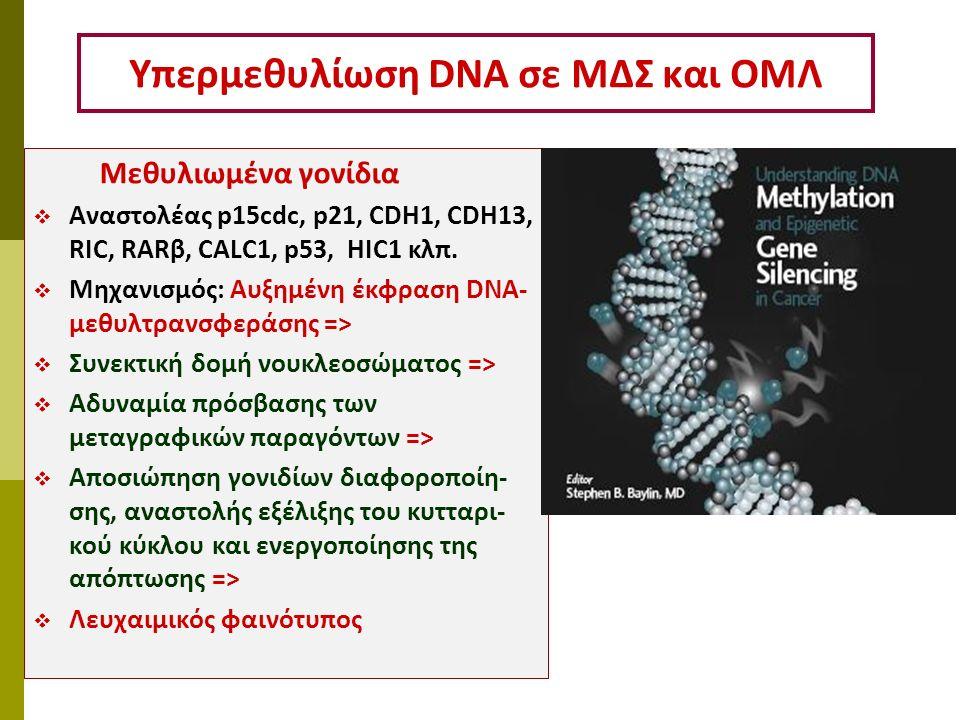 Υπερμεθυλίωση DNA σε ΜΔΣ και ΟΜΛ Μεθυλιωμένα γονίδια  Αναστολέας p15cdc, p21, CDH1, CDH13, RIC, RARβ, CALC1, p53, HIC1 κλπ.  Μηχανισμός: Αυξημένη έκ
