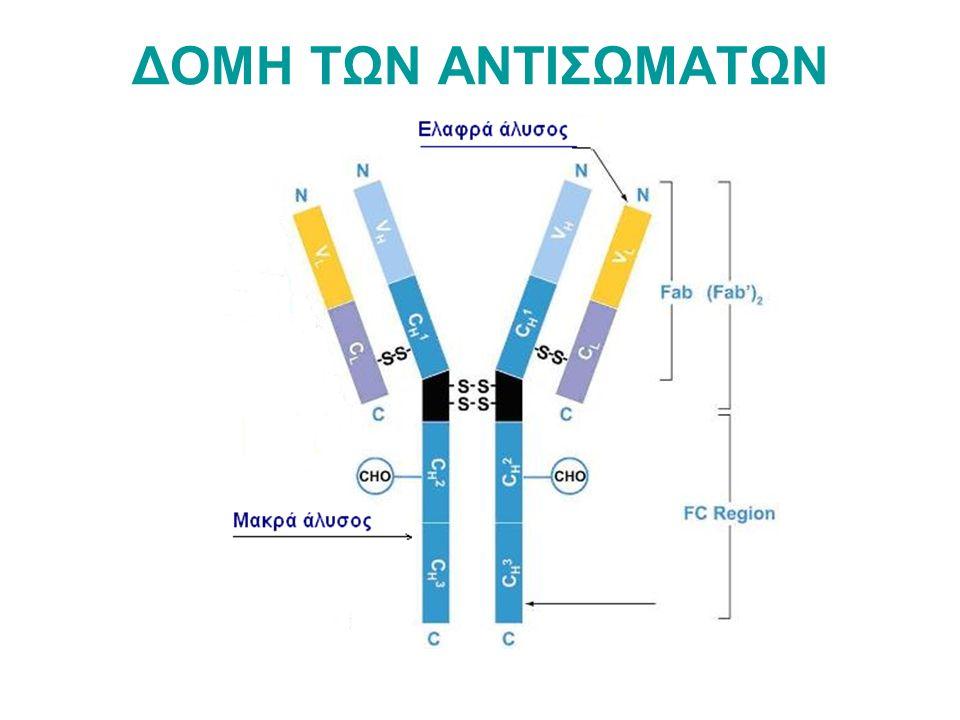 ΠΡΟΣΔΙΟΡΙΣΜΟΣ ΟΜΑΔΩΝ ΑΙΜΑΤΟΣ ΑΒΟ Προσδιορισμός ερυθροκυτταρικών αντιγόνων Α και Β σε πλάκα Χρησιμοποιούνται γνωστοί αντιοροί αντι-Α, αντι-Β αντι-Α,Β Προσδιορισμός αντισωμάτων αντι-Α και αντι-Β στον ορό Χρησιμοποιείται εναιώρημα γνωστών ερυθροκυττάρων ομάδων Α, Β, Ο