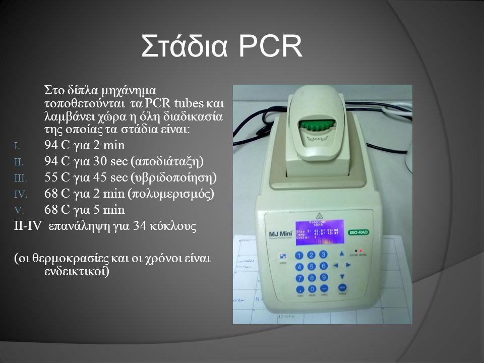 Στάδια PCR Στο δίπλα μηχάνημα τοποθετούνται τα PCR tubes και λαμβάνει χώρα η όλη διαδικασία της οποίας τα στάδια είναι: I. 94 C για 2 min II. 94 C για