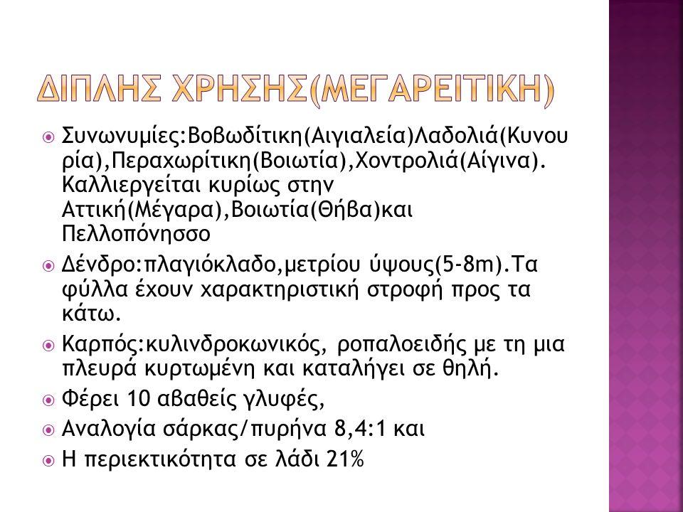  Συνωνυμίες:Βοβωδίτικη(Αιγιαλεία)Λαδολιά(Κυνου ρία),Περαχωρίτικη(Βοιωτία),Χοντρολιά(Αίγινα). Καλλιεργείται κυρίως στην Αττική(Μέγαρα),Βοιωτία(Θήβα)κα