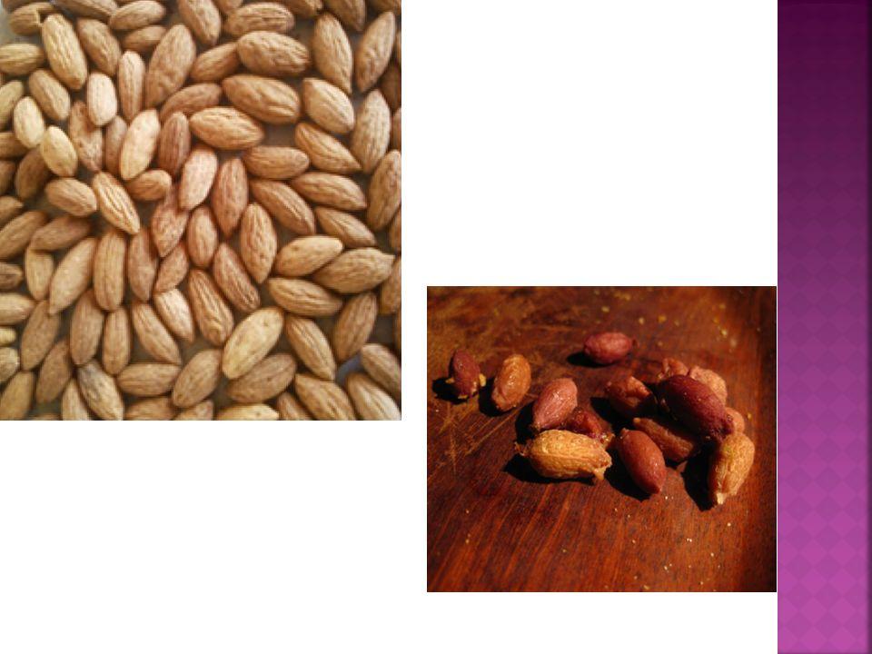  Kαταγωγή Ισπανία  Δένδρο: ζωηρό με ανάπτυξη καρποφόρων βλαστών σε κλαδιά 3-4 ετών  Καρπός: ελλειψοειδής στη κορυφή και στρογγυλός προς τη βάση.