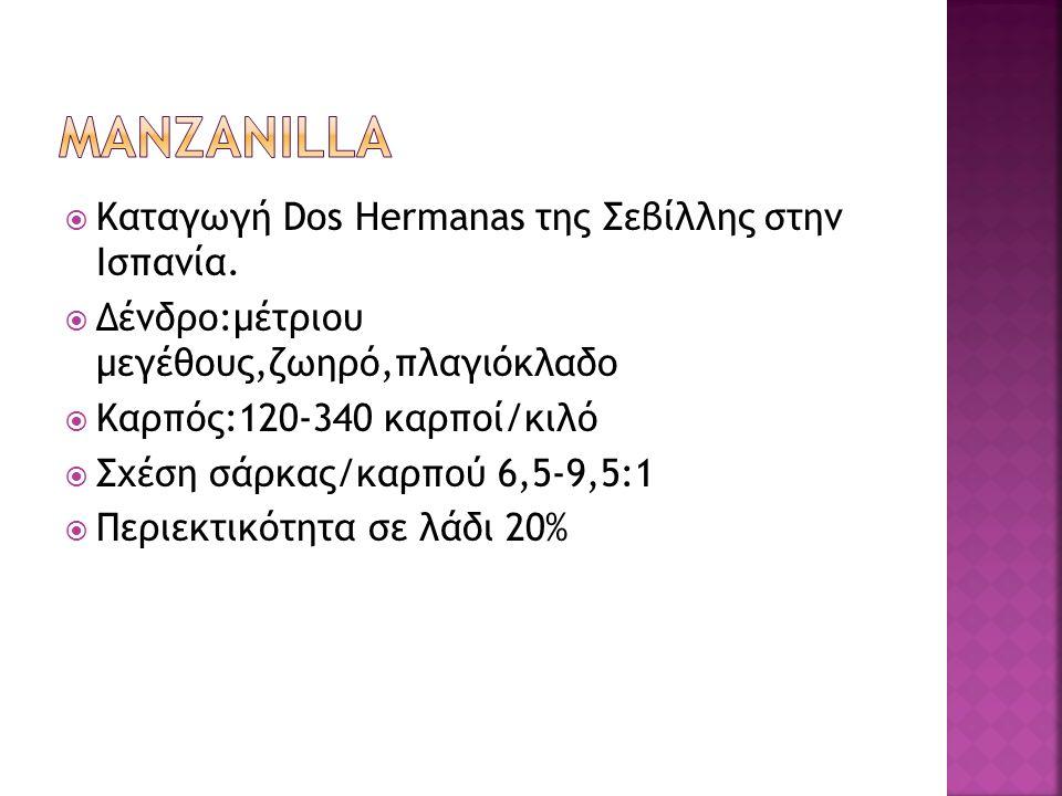  Καταγωγή Dos Hermanas της Σεβίλλης στην Ισπανία.  Δένδρο:μέτριου μεγέθους,ζωηρό,πλαγιόκλαδο  Καρπός:120-340 καρποί/κιλό  Σχέση σάρκας/καρπού 6,5-