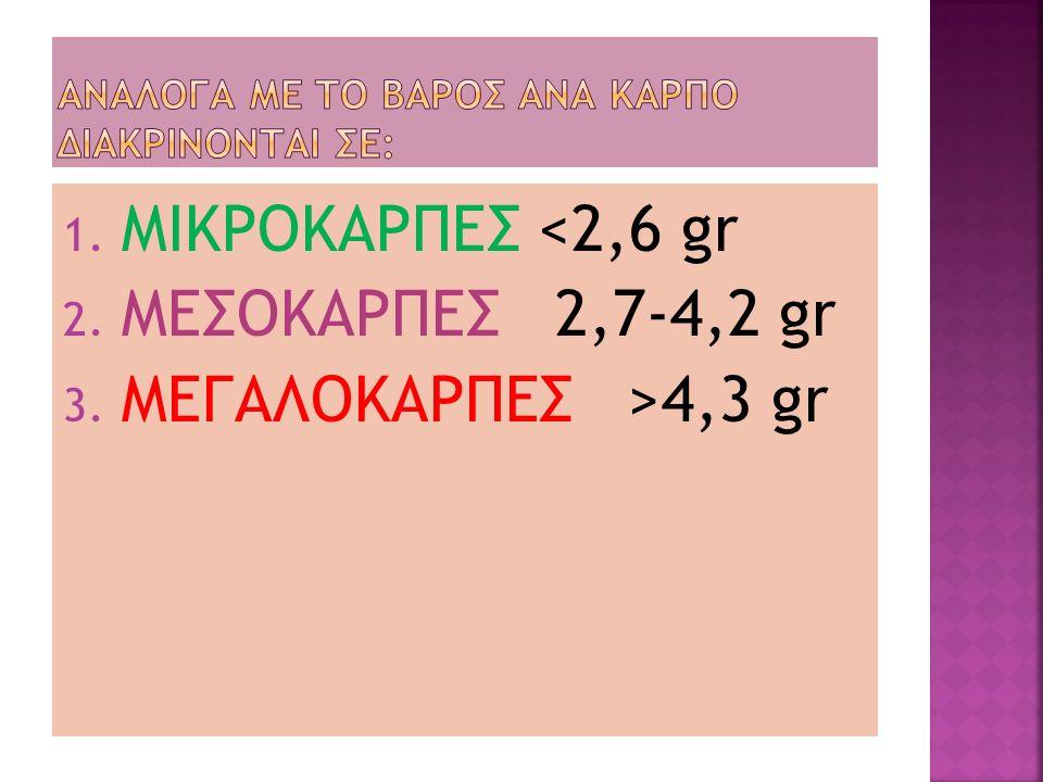 1. ΜΙΚΡΟΚΑΡΠΕΣ <2,6 gr 2. ΜΕΣΟΚΑΡΠΕΣ 2,7-4,2 gr 3. ΜΕΓΑΛΟΚΑΡΠΕΣ >4,3 gr