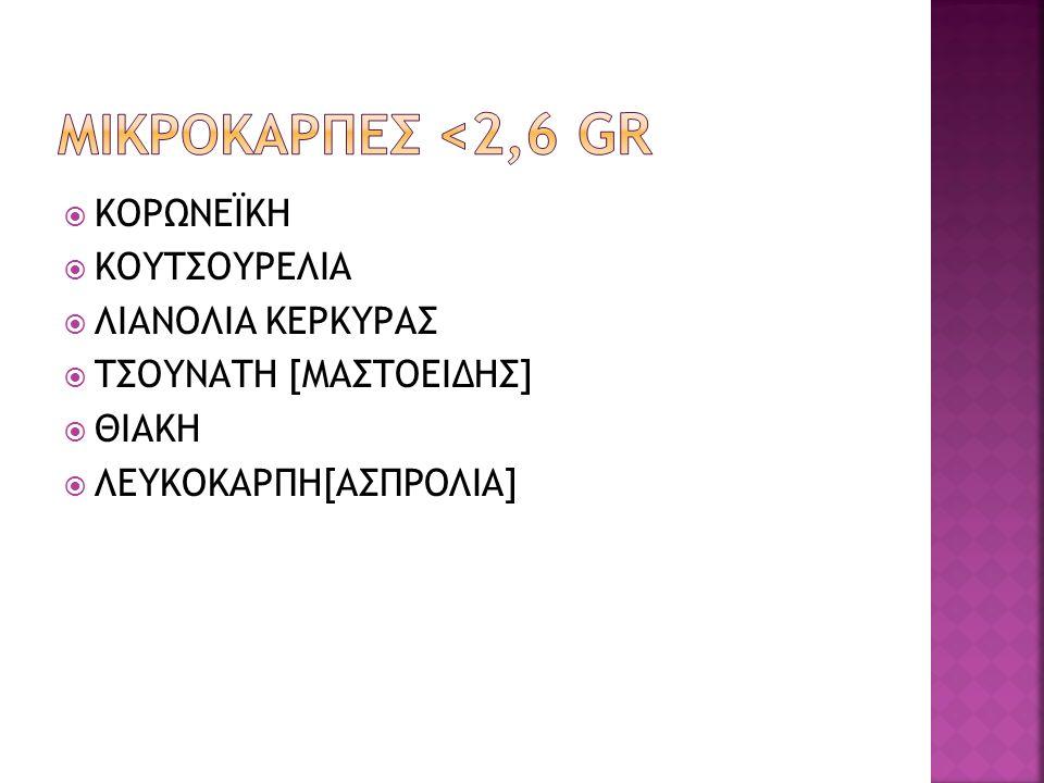  Συνωνυμίες,Τσουνάτη,μουρατολιά,αθηνολιά, μαστολιά  ΔΕΝΔΡΟ,ορθόκλαδο,6-8 μέτρα  Καρπός σχήμα ωοειδές, με θηλή στη κορυφή.