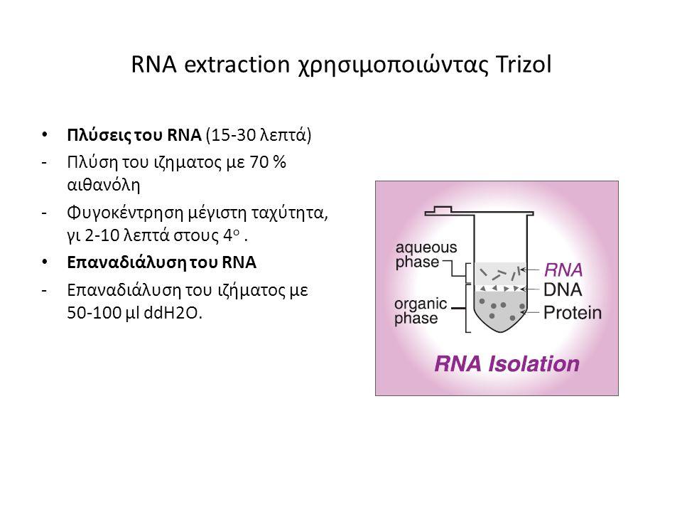 RΝΑ extraction χρησιμοποιώντας Trizol Πλύσεις του RNA (15-30 λεπτά) -Πλύση του ιζηματος με 70 % αιθανόλη -Φυγοκέντρηση μέγιστη ταχύτητα, γι 2-10 λεπτά