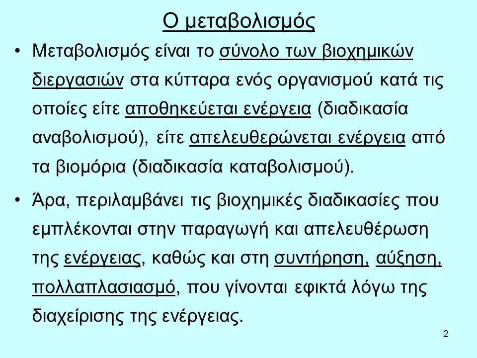 13 ΔΕΡΜΑΤΟΠΤΥΧΕΣ