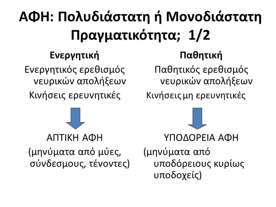 ΑΦΗ: Πολυδιάστατη ή Μονοδιάστατη Πραγματικότητα; 1/2 Ενεργητική Ενεργητικός ερεθισμός νευρικών απολήξεων Κινήσεις ερευνητικές ΑΠΤΙΚΗ ΑΦΗ (μηνύματα από