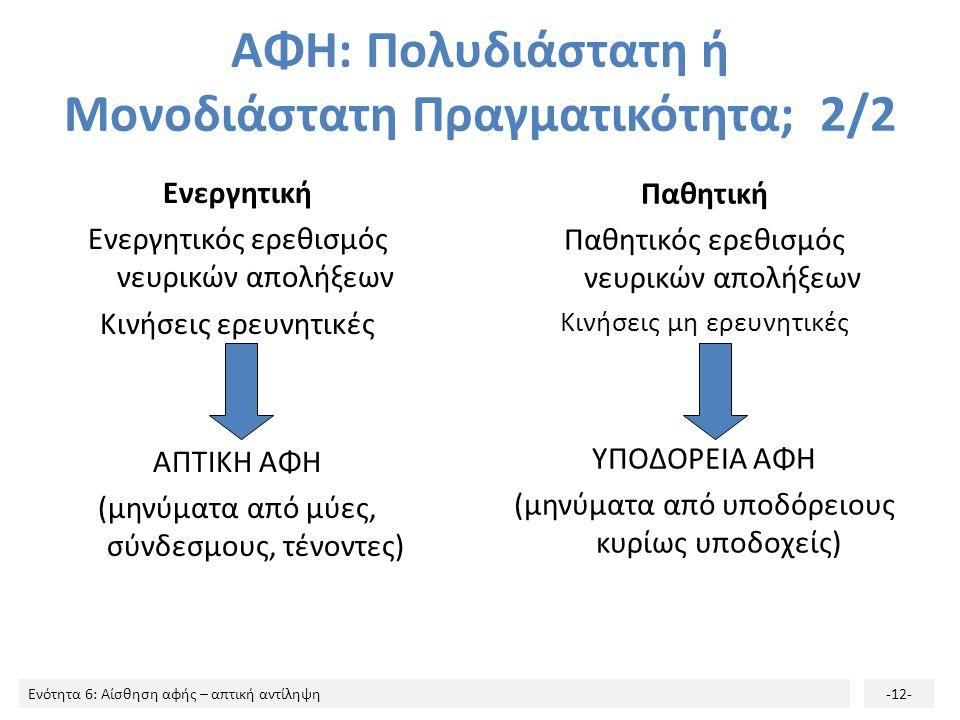 Ενότητα 6: Αίσθηση αφής – απτική αντίληψη-12- ΑΦΗ: Πολυδιάστατη ή Μονοδιάστατη Πραγματικότητα; 2/2 Ενεργητική Ενεργητικός ερεθισμός νευρικών απολήξεων