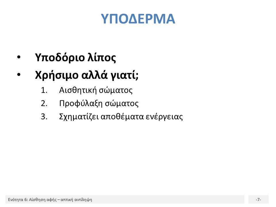 Ενότητα 6: Αίσθηση αφής – απτική αντίληψη-7- ΥΠΟΔΕΡΜΑ Υποδόριο λίπος Χρήσιμο αλλά γιατί; 1.Αισθητική σώματος 2.Προφύλαξη σώματος 3.Σχηματίζει αποθέματ