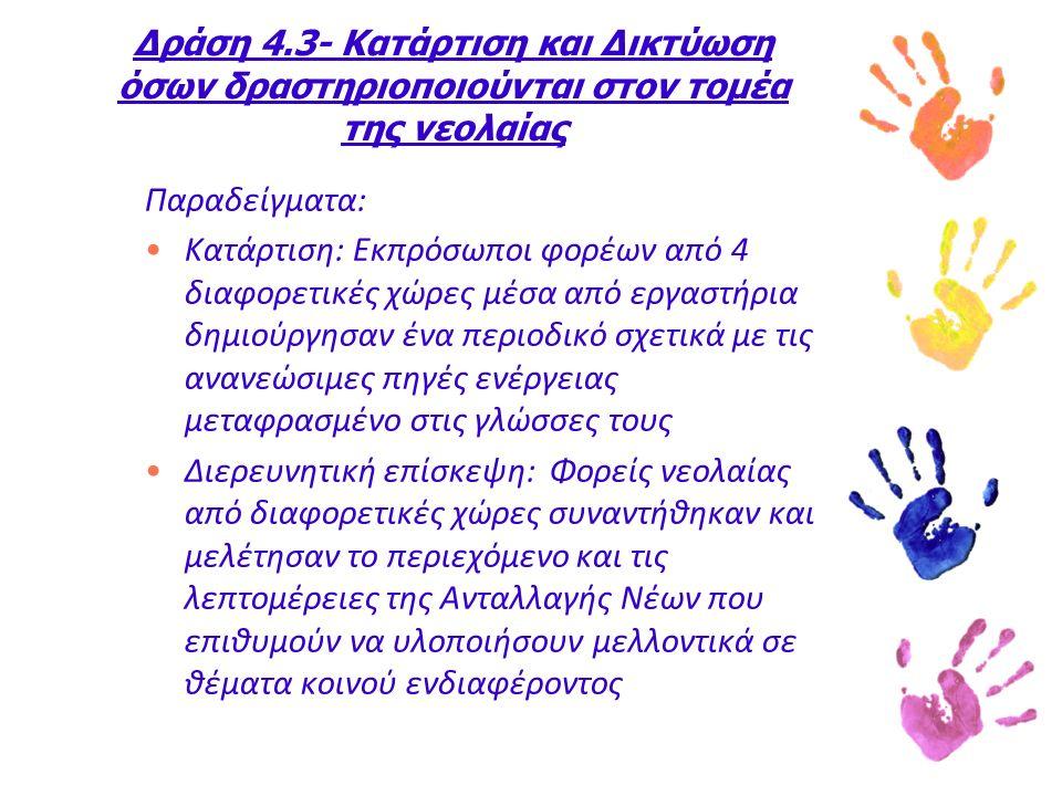 Δράση 4.3- Κατάρτιση και Δικτύωση όσων δραστηριοποιούνται στον τομέα της νεολαίας Παραδείγματα: Κατάρτιση: Εκπρόσωποι φορέων από 4 διαφορετικές χώρες μέσα από εργαστήρια δημιούργησαν ένα περιοδικό σχετικά με τις ανανεώσιμες πηγές ενέργειας μεταφρασμένο στις γλώσσες τους Διερευνητική επίσκεψη: Φορείς νεολαίας από διαφορετικές χώρες συναντήθηκαν και μελέτησαν το περιεχόμενο και τις λεπτομέρειες της Ανταλλαγής Νέων που επιθυμούν να υλοποιήσουν μελλοντικά σε θέματα κοινού ενδιαφέροντος