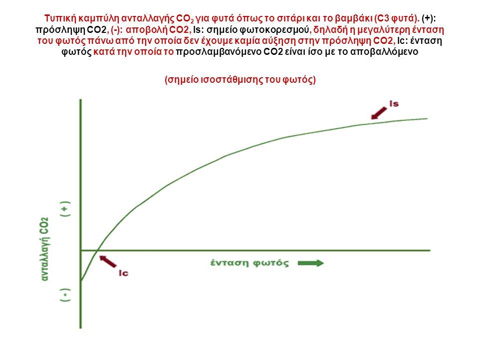 Τυπική καμπύλη ανταλλαγής CO 2 για φυτά όπως το σιτάρι και το βαμβάκι (C3 φυτά).