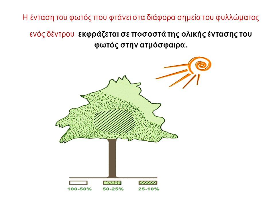 Η ένταση του φωτός που φτάνει στα διάφορα σημεία του φυλλώματος ενός δέντρου εκφράζεται σε ποσοστά της ολικής έντασης του φωτός στην ατμόσφαιρα.
