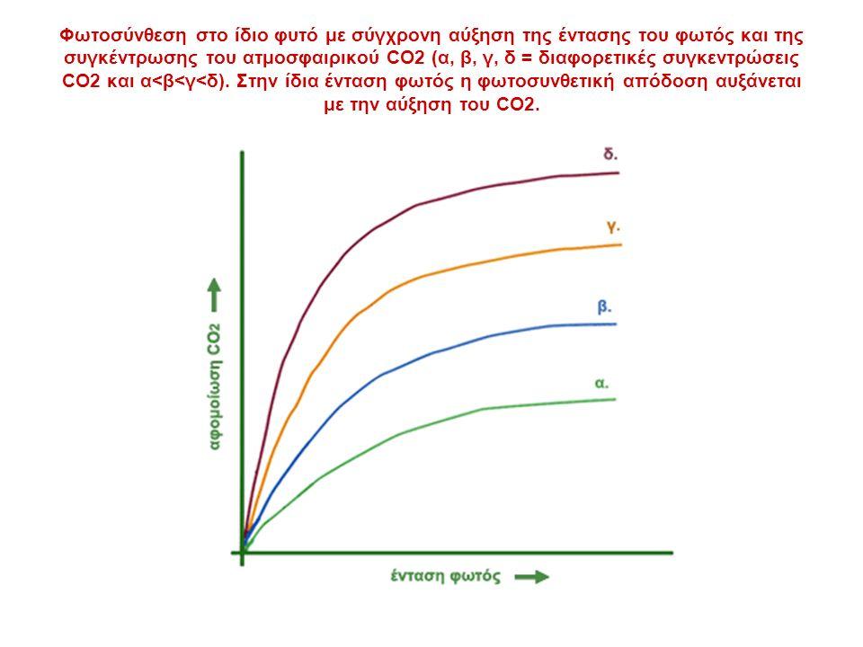 Φωτοσύνθεση στο ίδιο φυτό με σύγχρονη αύξηση της έντασης του φωτός και της συγκέντρωσης του ατμοσφαιρικού CO2 (α, β, γ, δ = διαφορετικές συγκεντρώσεις CO2 και α<β<γ<δ).