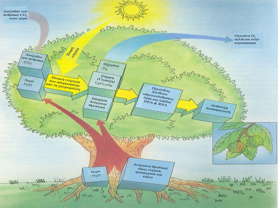 ΠΟΣΙΜΟ ΝΕΡΟ Χλωρίωση του νερού  Το χλώριο προστίθεται στο νερό για να μας εξασφαλίσει ότι θα φτάσει στην βρύση καθαρό.