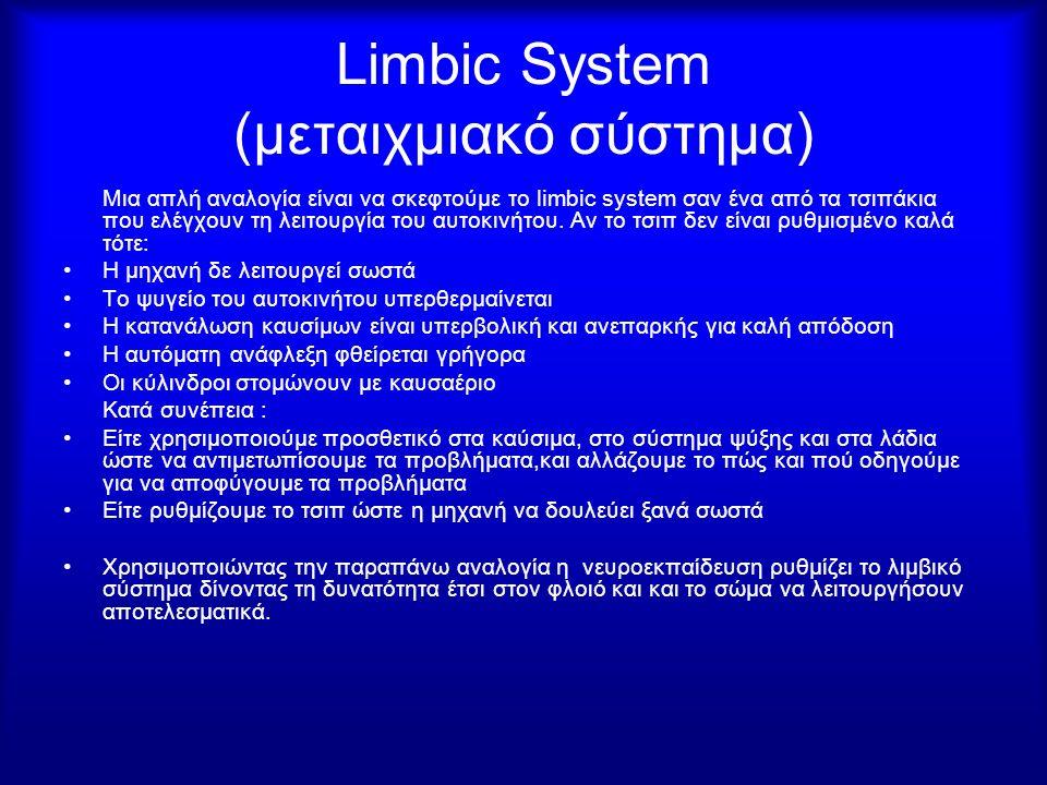 Limbic System (μεταιχμιακό σύστημα) Μια απλή αναλογία είναι να σκεφτούμε το limbic system σαν ένα από τα τσιπάκια που ελέγχουν τη λειτουργία του αυτοκ