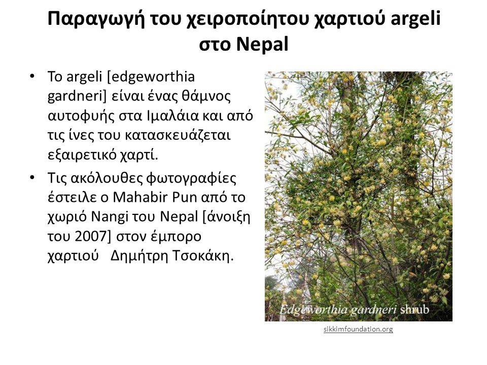 Παραγωγή του χειροποίητου χαρτιού argeli στο Nepal Το argeli [edgeworthia gardneri] είναι ένας θάμνος αυτοφυής στα Ιμαλάια και από τις ίνες του κατασκευάζεται εξαιρετικό χαρτί.
