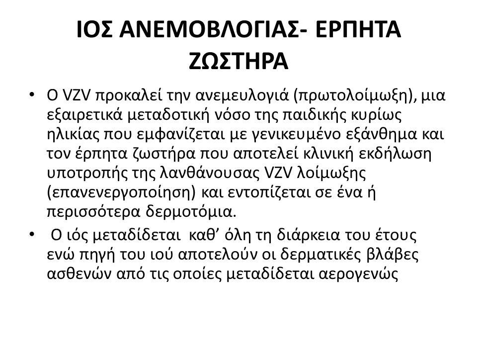 ΙΟΣ ΑΝΕΜΟΒΛΟΓΙΑΣ- ΕΡΠΗΤΑ ΖΩΣΤΗΡΑ Ο VZV προκαλεί την ανεμευλογιά (πρωτολοίμωξη), μια εξαιρετικά μεταδοτική νόσο της παιδικής κυρίως ηλικίας που εμφανίζ