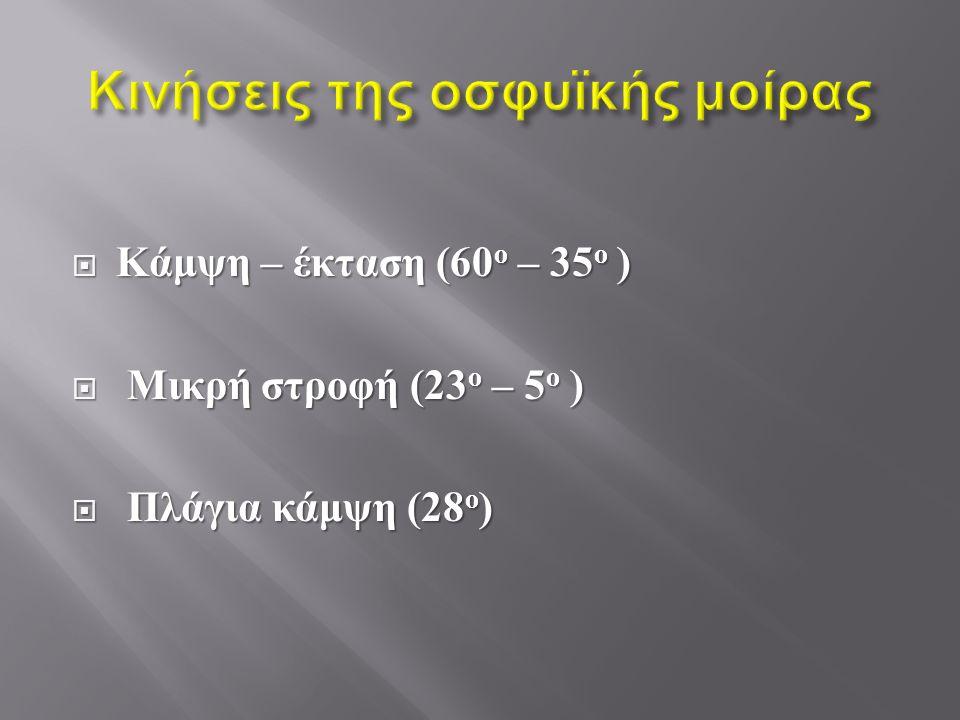  Κάμψη – έκταση (60 ο – 35 ο )  Μικρή στροφή (23 ο – 5 ο )  Πλάγια κάμψη (28 ο )