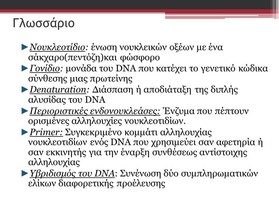 Γλωσσάριο ► Νουκλεοτίδιο: ένωση νουκλεικών οξέων με ένα σάκχαρο(πεντόζη)και φώσφορο ► Γονίδιο: μονάδα του DNA που κατέχει το γενετικό κώδικα σύνθεσης μιας πρωτείνης ► Denaturation: Διάσπαση ή αποδιάταξη της διπλής αλυσίδας του DNA ► Περιοριστικές ενδονουκλεάσες: Ένζυμα που πέπτουν ορισμένες αλληλουχίες νουκλεοτιδίων.