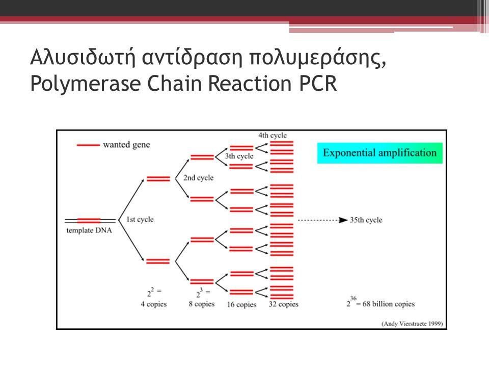 Αλυσιδωτή αντίδραση πολυμεράσης, Polymerase Chain Reaction PCR