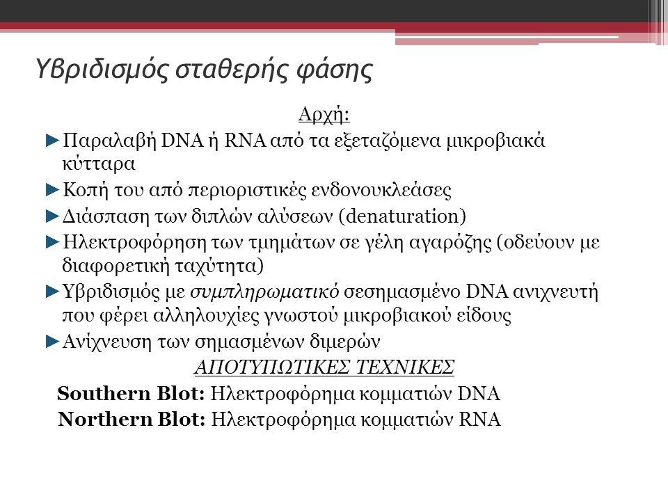 Υβριδισμός σταθερής φάσης Αρχή: ► Παραλαβή DNA ή RNA από τα εξεταζόμενα μικροβιακά κύτταρα ► Κοπή του από περιοριστικές ενδονουκλεάσες ► Διάσπαση των διπλών αλύσεων (denaturation) ► Ηλεκτροφόρηση των τμημάτων σε γέλη αγαρόζης (οδεύουν με διαφορετική ταχύτητα) ► Υβριδισμός με συμπληρωματικό σεσημασμένο DNA ανιχνευτή που φέρει αλληλουχίες γνωστού μικροβιακού είδους ► Ανίχνευση των σημασμένων διμερών ΑΠΟΤΥΠΩΤΙΚΕΣ ΤΕΧΝΙΚΕΣ Southern Blot: Hλεκτροφόρημα κομματιών DNA Northern Blot: Hλεκτροφόρημα κομματιών RNA
