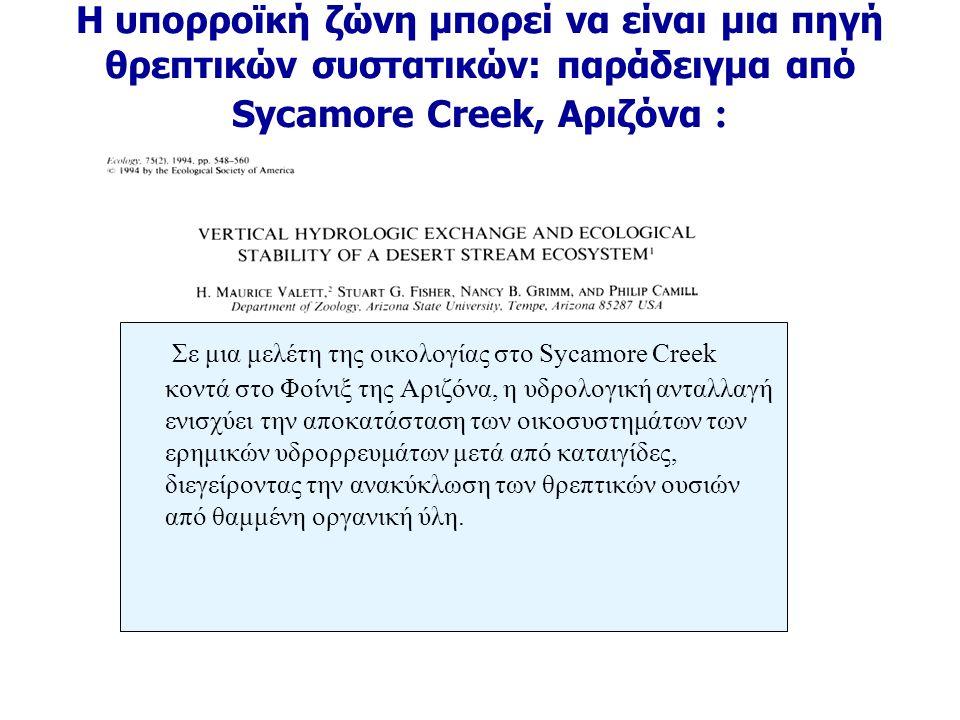 Η υπορροϊκή ζώνη μπορεί να είναι μια πηγή θρεπτικών συστατικών: παράδειγμα από Sycamore Creek, Αριζόνα : Σε μια μελέτη της οικολογίας στο Sycamore Creek κοντά στο Φοίνιξ της Αριζόνα, η υδρολογική ανταλλαγή ενισχύει την αποκατάσταση των οικοσυστημάτων των ερημικών υδρορρευμάτων μετά από καταιγίδες, διεγείροντας την ανακύκλωση των θρεπτικών ουσιών από θαμμένη οργανική ύλη.