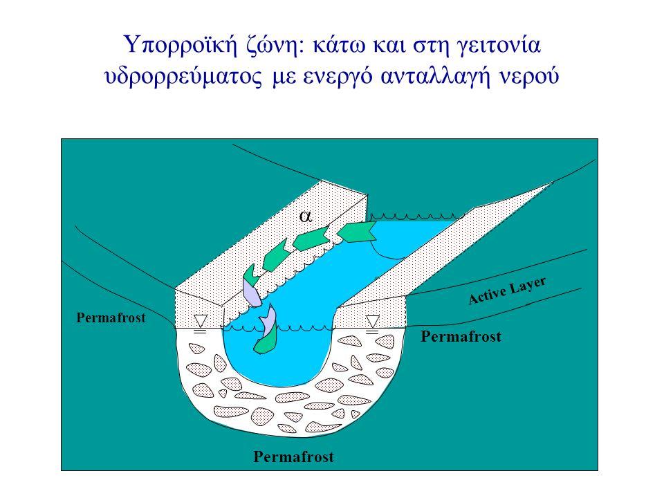 Υπορροϊκή ζώνη: κάτω και στη γειτονία υδρορρεύματος με ενεργό ανταλλαγή νερού Permafrost  Active Layer