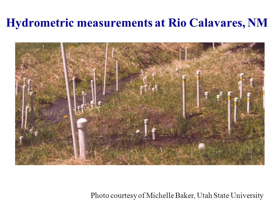 Hydrometric measurements at Rio Calavares, NM Photo courtesy of Michelle Baker, Utah State University