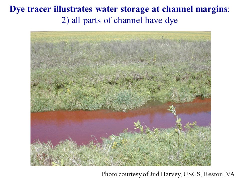 Dye tracer illustrates water storage at channel margins: 2) all parts of channel have dye Photo courtesy of Jud Harvey, USGS, Reston, VA