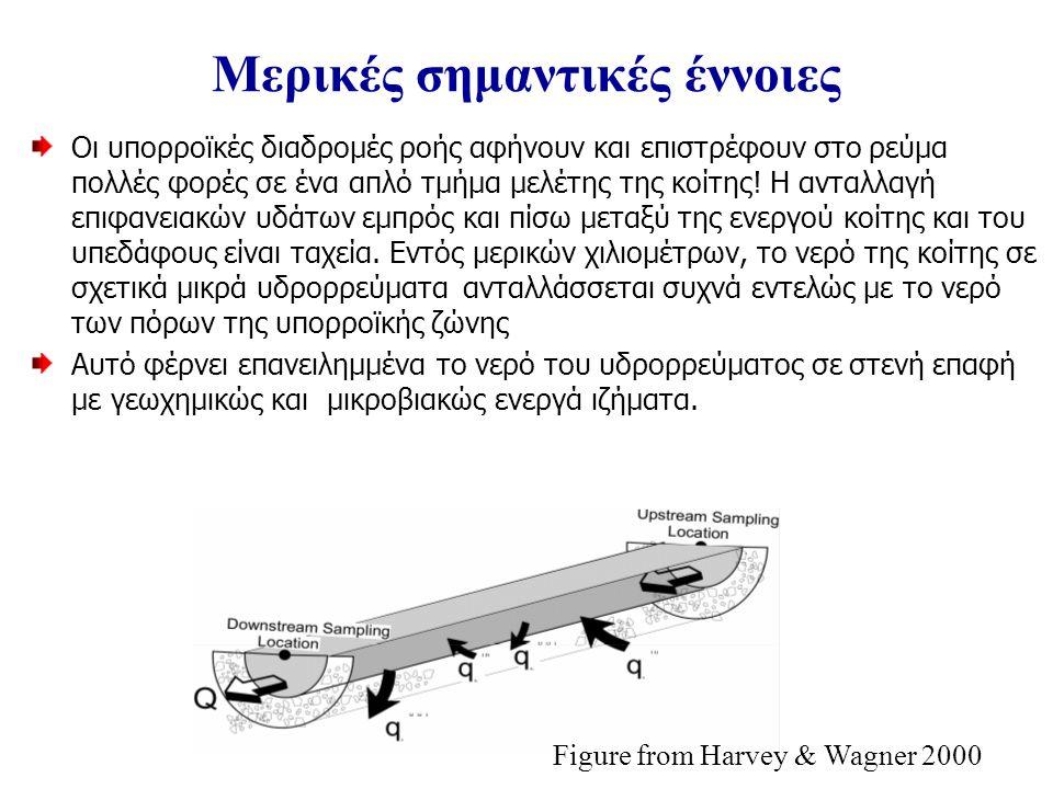 Μερικές σημαντικές έννοιες Οι υπορροϊκές διαδρομές ροής αφήνουν και επιστρέφουν στο ρεύμα πολλές φορές σε ένα απλό τμήμα μελέτης της κοίτης.