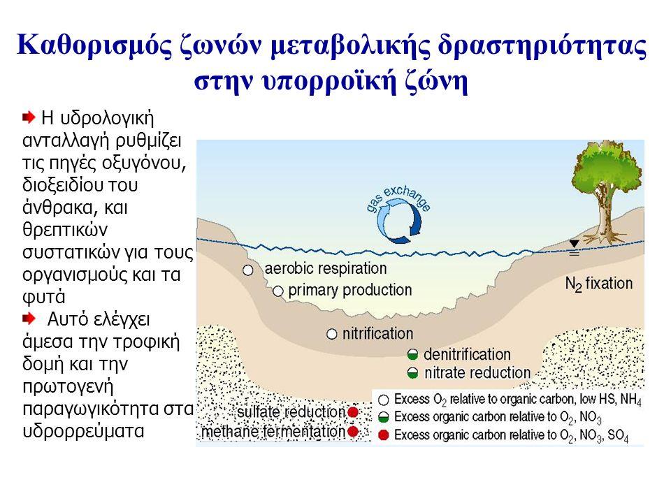 Η υδρολογική ανταλλαγή ρυθμίζει τις πηγές οξυγόνου, διοξειδίου του άνθρακα, και θρεπτικών συστατικών για τους οργανισμούς και τα φυτά Αυτό ελέγχει άμεσα την τροφική δομή και την πρωτογενή παραγωγικότητα στα υδρορρεύματα Καθορισμός ζωνών μεταβολικής δραστηριότητας στην υπορροϊκή ζώνη