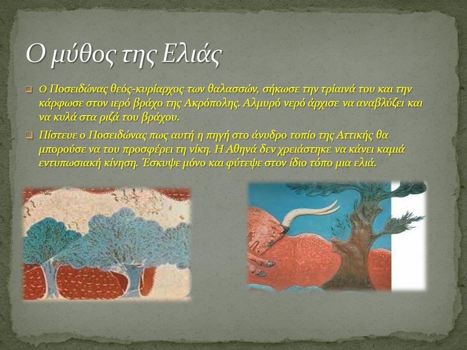  Ο Ποσειδώνας θεός-κυρίαρχος των θαλασσών, σήκωσε την τρίαινά του και την κάρφωσε στον ιερό βράχο της Ακρόπολης. Αλμυρό νερό άρχισε να αναβλύζει και