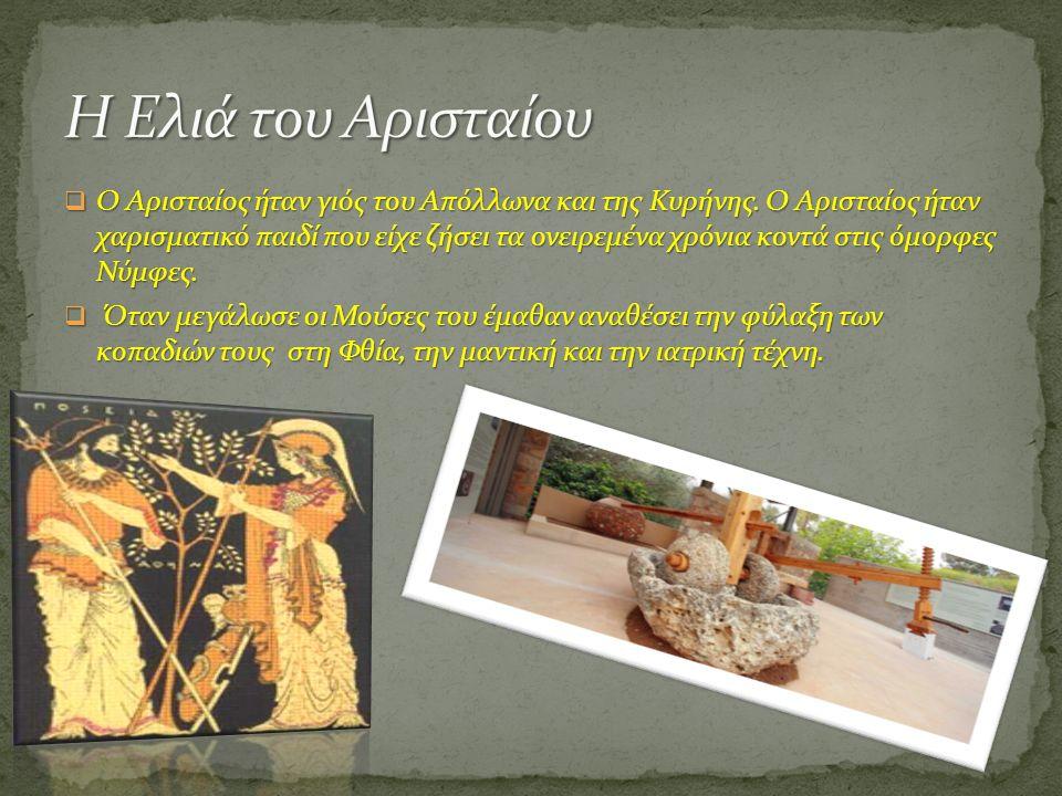  Ο Αρισταίος ήταν γιός του Απόλλωνα και της Κυρήνης. Ο Αρισταίος ήταν χαρισματικό παιδί που είχε ζήσει τα ονειρεμένα χρόνια κοντά στις όμορφες Νύμφες