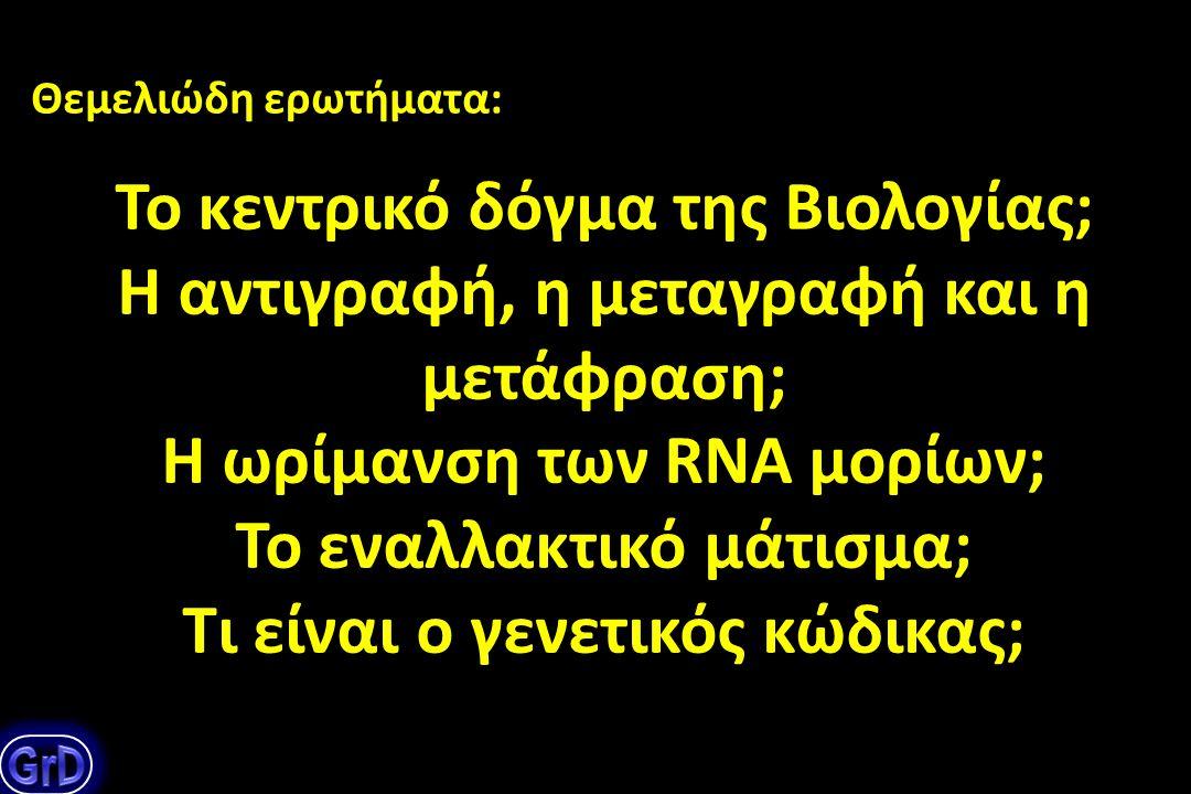 Τι είναι το DNA, το RNA; Ποια η χημική τους σύσταση, η δομή και ποιος ο βιολογικός τους ρόλος; Θεμελιώδη ερωτήματα: