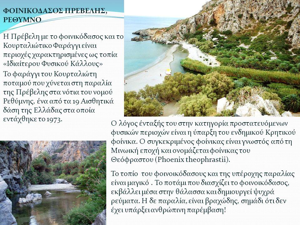 Η Πρέβελη με το φοινικόδασος και το Κουρταλιώτικο Φαράγγι είναι περιοχές χαρακτηρισμένες ως τοπία «Ιδιαίτερου Φυσικού Κάλλους» ΦΟΙΝΙΚΟΔΑΣΟΣ ΠΡΕΒΕΛΗΣ,