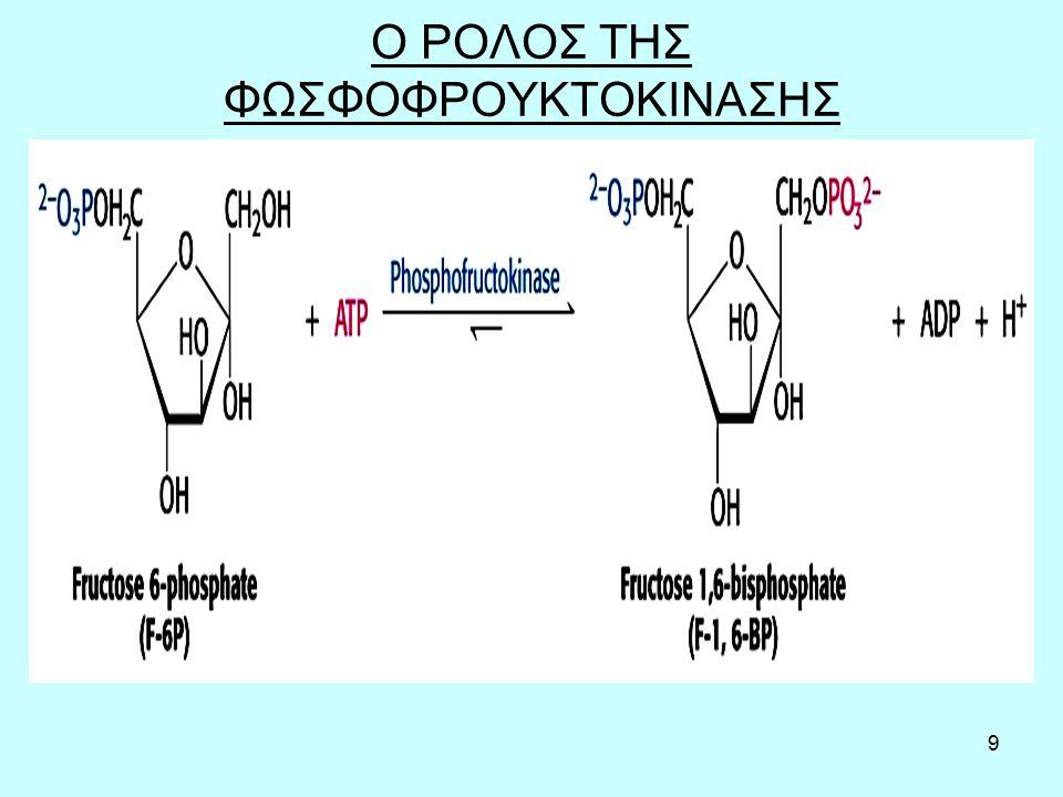 10 Ο ΡΟΛΟΣ ΤΗΣ ΦΩΣΦΟΦΡΟΥΚΤΟΚΙΝΑΣΗΣ Όταν στο κύτταρο υπάρχει λίγο ΑΤΡ (άρα πολύ ADP και ΑΜΡ), τίθεται σε λειτουργία η γλυκόλυση και οι υπόλοιπες αντιδράσεις αυτής της διαδικασίας, για να παραχθούν τα απαραίτητα μόρια ΑΤΡ, από τα αποθέματα του κυττάρου σε γλυκογόνο.