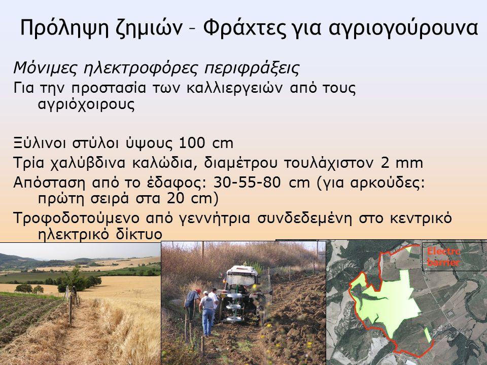 Μόνιμες ηλεκτροφόρες περιφράξεις Για την προστασία των καλλιεργειών από τους αγριόχοιρους Ξύλινοι στύλοι ύψους 100 cm Τρία χαλύβδινα καλώδια, διαμέτρου τουλάχιστον 2 mm Απόσταση από το έδαφος: 30-55-80 cm (για αρκούδες: πρώτη σειρά στα 20 cm) Τροφοδοτούμενο από γεννήτρια συνδεδεμένη στο κεντρικό ηλεκτρικό δίκτυο Electrc barrier Πρόληψη ζημιών – Φράχτες για αγριογούρουνα