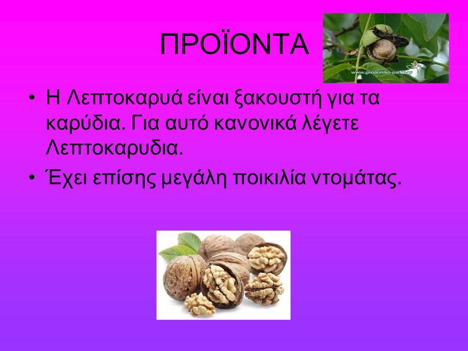 ΠΡΟΪΟΝΤΑ Η Λεπτοκαρυά είναι ξακουστή για τα καρύδια.