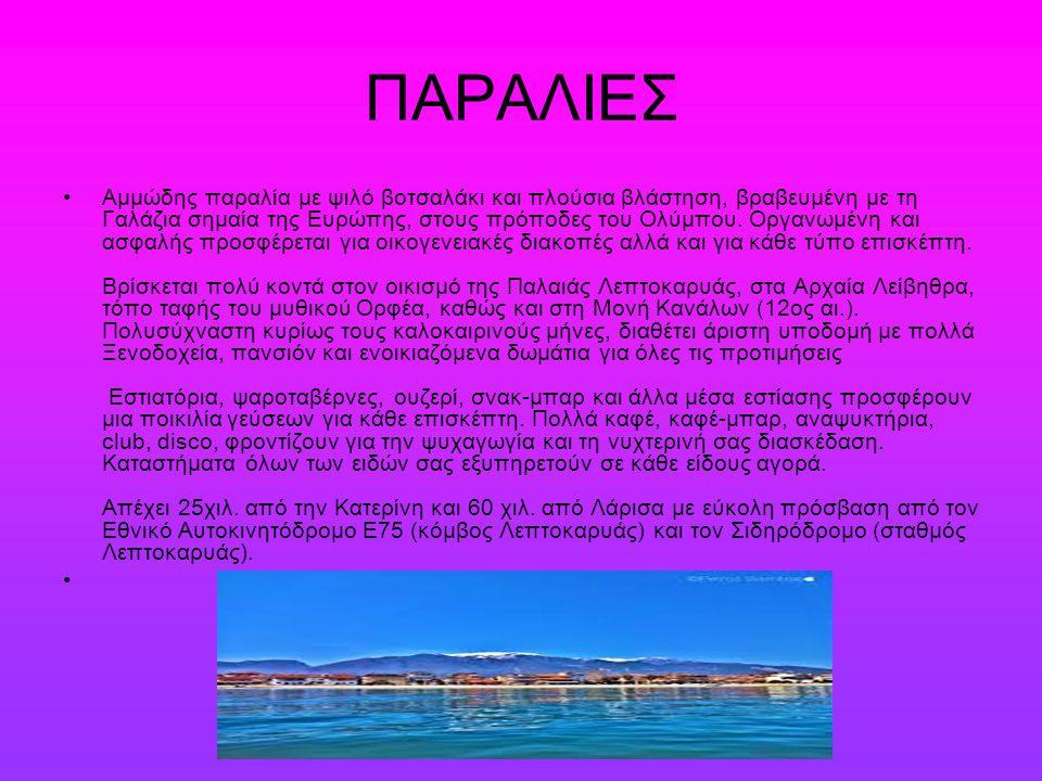 ΠΑΡΑΛΙΕΣ Αμμώδης παραλία με ψιλό βοτσαλάκι και πλούσια βλάστηση, βραβευμένη με τη Γαλάζια σημαία της Ευρώπης, στους πρόποδες του Ολύμπου.