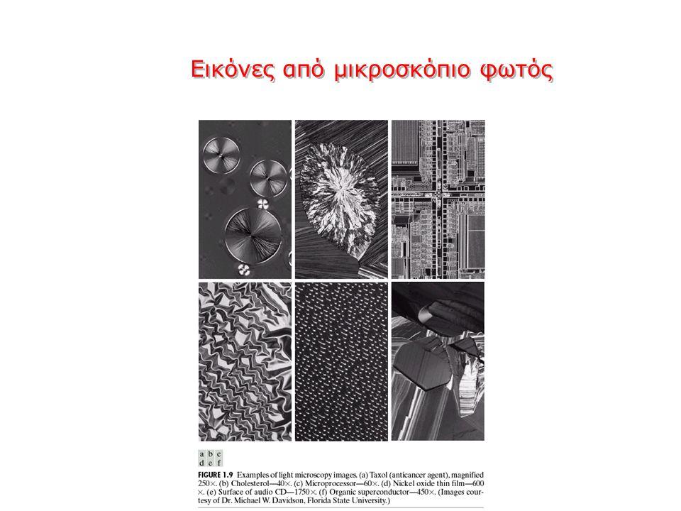 Εικόνες από μικροσκόπιο φωτός