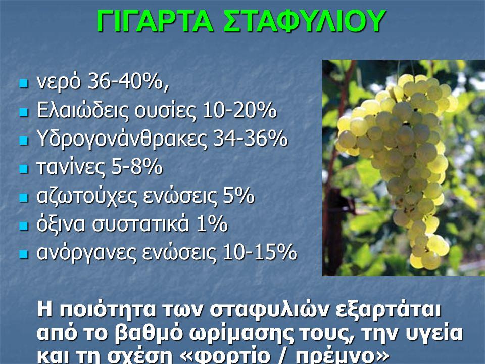 νερό 36-40%, νερό 36-40%, Ελαιώδεις ουσίες 10-20% Ελαιώδεις ουσίες 10-20% Υδρογονάνθρακες 34-36% Υδρογονάνθρακες 34-36% τανίνες 5-8% τανίνες 5-8% αζωτούχες ενώσεις 5% αζωτούχες ενώσεις 5% όξινα συστατικά 1% όξινα συστατικά 1% ανόργανες ενώσεις 10-15% ανόργανες ενώσεις 10-15% Η ποιότητα των σταφυλιών εξαρτάται από το βαθμό ωρίμασης τους, την υγεία και τη σχέση «φορτίο / πρέμνο» ΓΙΓΑΡΤΑ ΣΤΑΦΥΛΙΟΥ