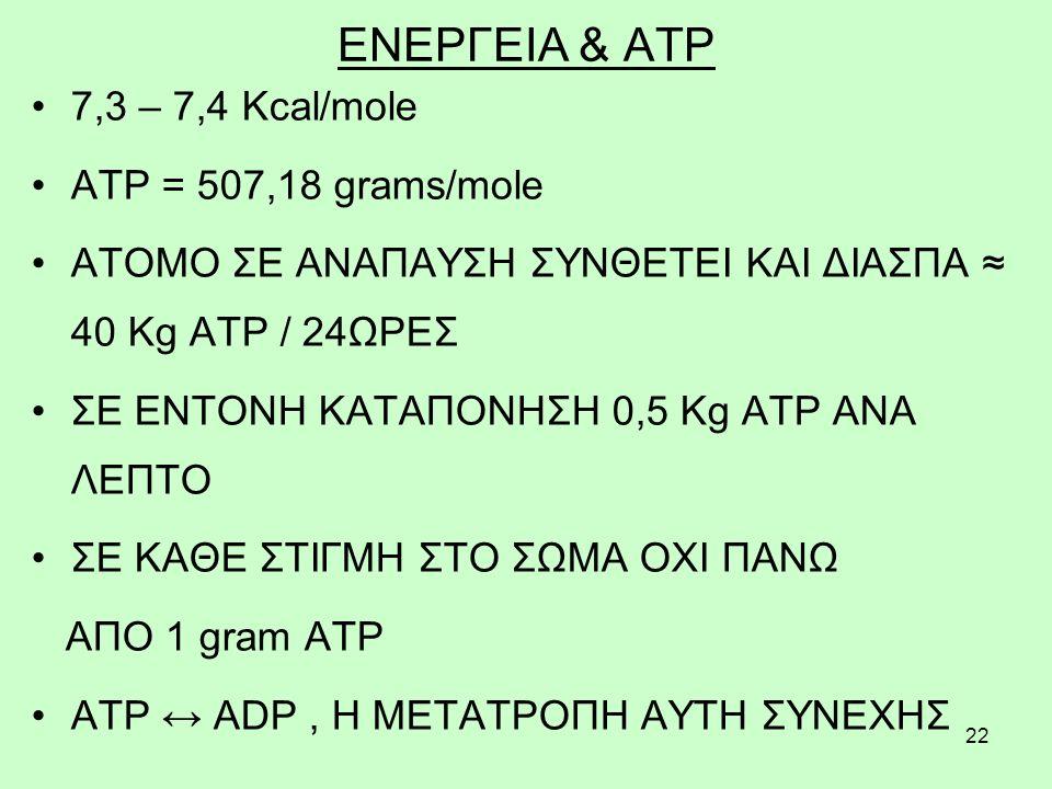 22 ΕΝΕΡΓΕΙΑ & ATP 7,3 – 7,4 Kcal/mole ATP = 507,18 grams/mole ΑΤΟΜΟ ΣΕ ΑΝΑΠΑΥΣΗ ΣΥΝΘΕΤΕΙ ΚΑΙ ΔΙΑΣΠΑ ≈ 40 Kg ATP / 24ΩΡΕΣ ΣΕ ΕΝΤΟΝΗ ΚΑΤΑΠΟΝΗΣΗ 0,5 Kg ATP ΑΝΑ ΛΕΠΤΟ ΣΕ ΚΑΘΕ ΣΤΙΓΜΗ ΣΤΟ ΣΩΜΑ ΟΧΙ ΠΑΝΩ ΑΠΟ 1 gram ATP ATP ↔ ADP, Η ΜΕΤΑΤΡΟΠΗ ΑΥΤΗ ΣΥΝΕΧΗΣ