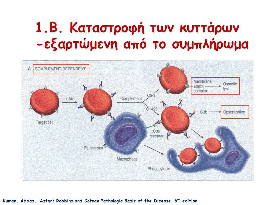 1.B. Καταστροφή των κυττάρων -εξαρτώμενη από το συμπλήρωμα Kumar, Abbas, Aster: Robbins and Cotran Pathologic Basis of the Disease, 6 th edition