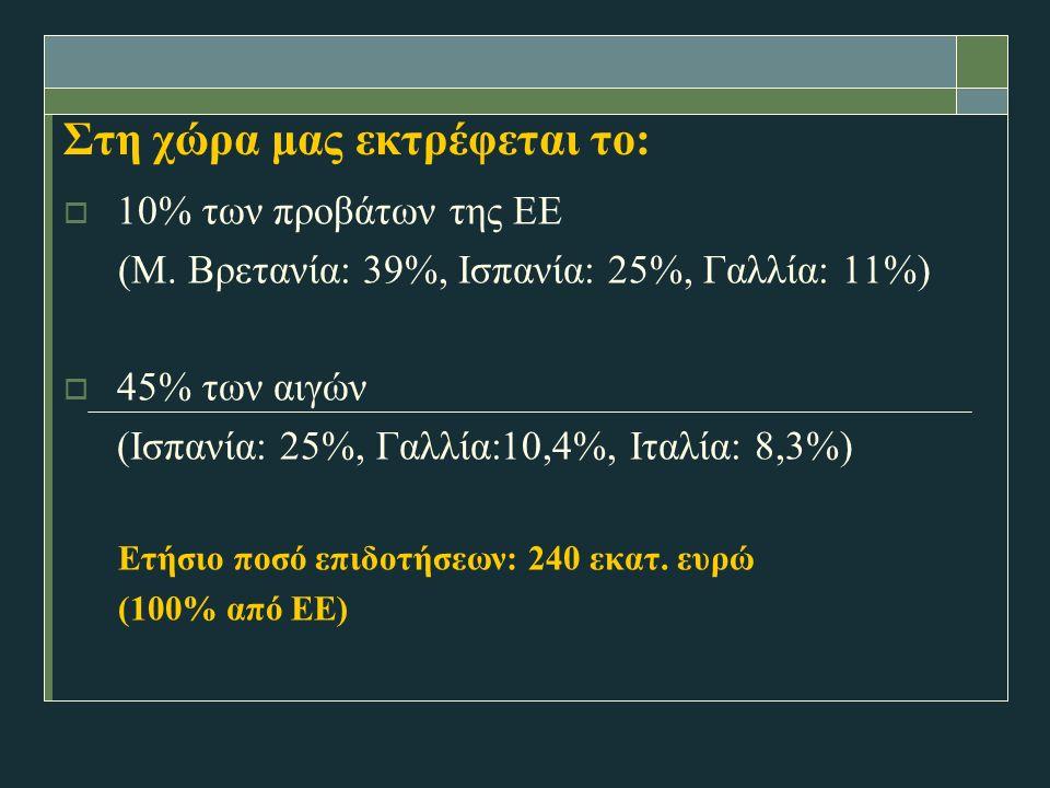 Στη χώρα μας εκτρέφεται το:  10% των προβάτων της ΕΕ (Μ.