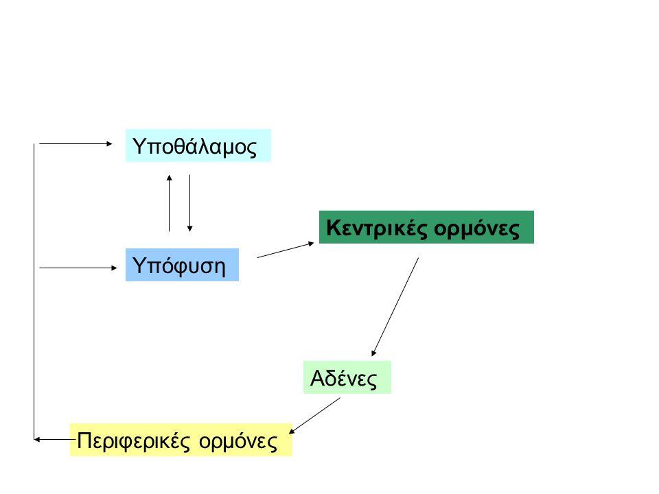 Υποθάλαμος Υπόφυση Αδένες Κεντρικές ορμόνες Περιφερικές ορμόνες