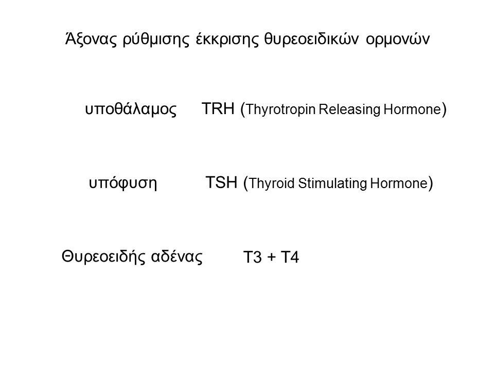 Άξονας ρύθμισης έκκρισης θυρεοειδικών ορμονών υπόφυση υποθάλαμος Θυρεοειδής αδένας TSH ( Thyroid Stimulating Hormone ) TRH ( Thyrotropin Releasing Hormone ) T3 + T4