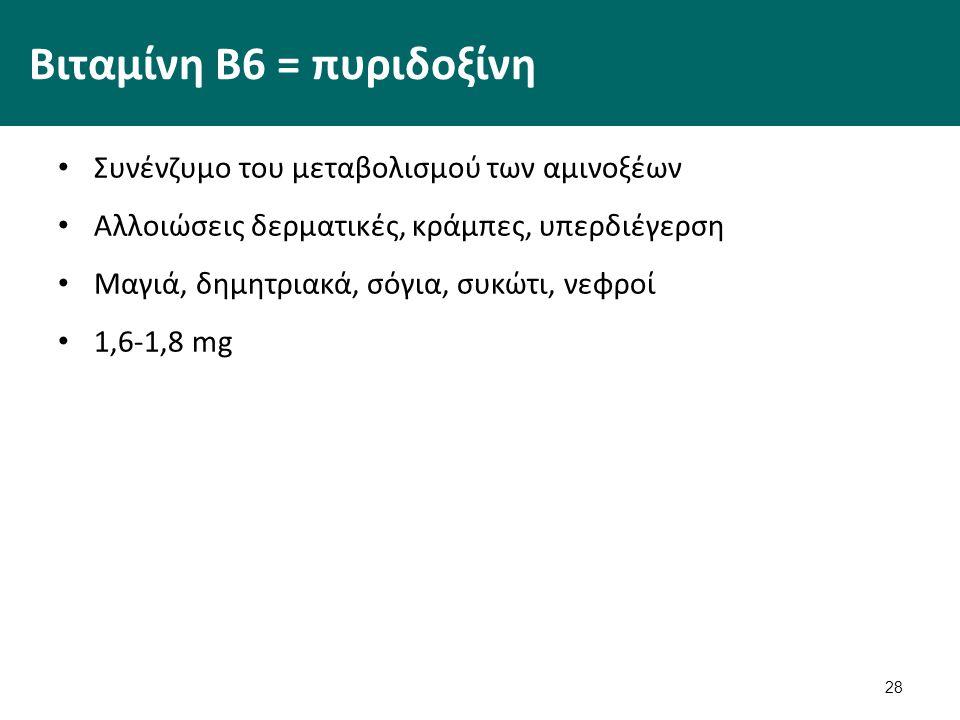 28 Βιταμίνη Β6 = πυριδοξίνη Συνένζυμο του μεταβολισμού των αμινοξέων Αλλοιώσεις δερματικές, κράμπες, υπερδιέγερση Μαγιά, δημητριακά, σόγια, συκώτι, νε