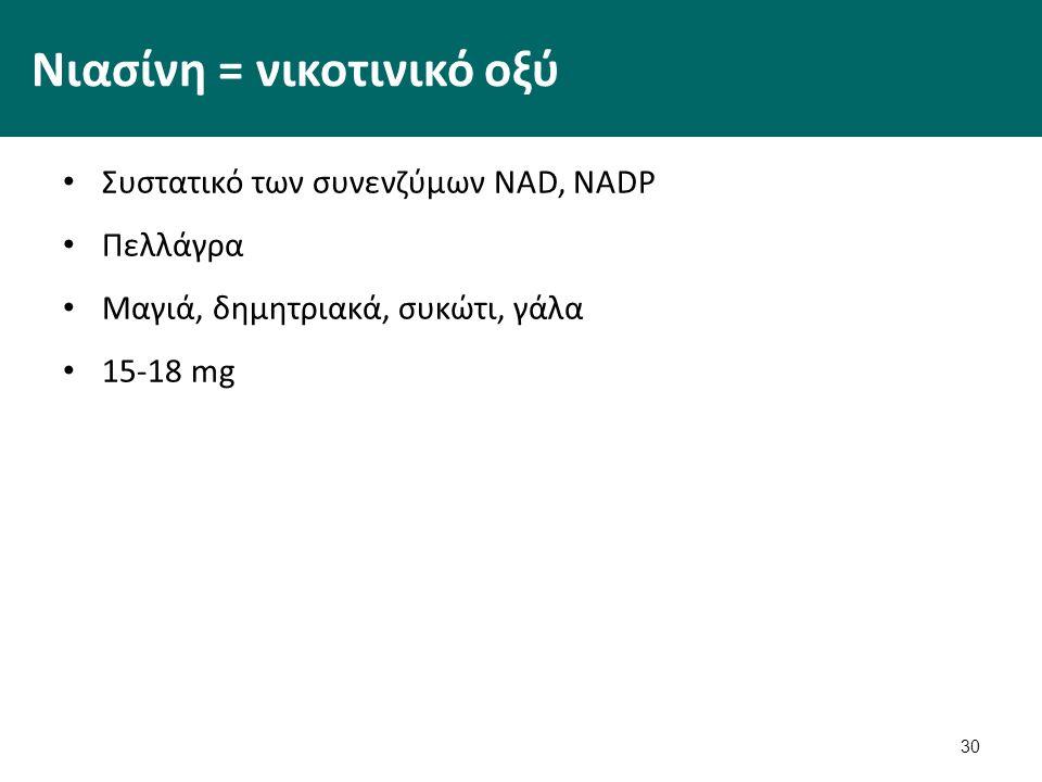 30 Νιασίνη = νικοτινικό οξύ Συστατικό των συνενζύμων NAD, NADP Πελλάγρα Μαγιά, δημητριακά, συκώτι, γάλα 15-18 mg