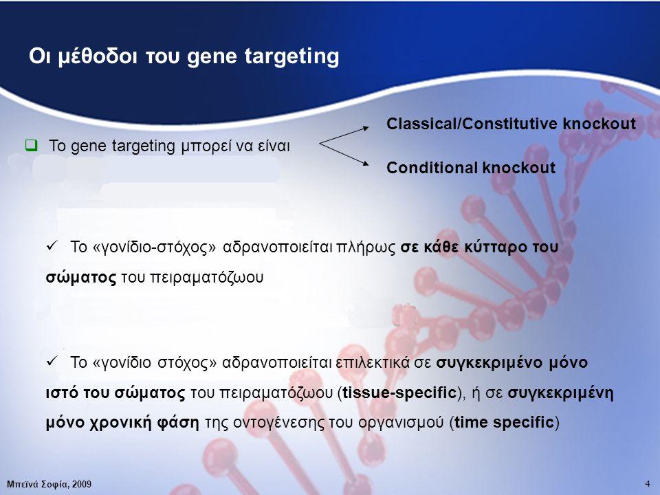 4 Μπεϊνά Σοφία, 2009 4 Οι μέθοδοι του gene targeting  Το gene targeting μπορεί να είναι Classical/Constitutive knockout Conditional knockout Το «γονίδιο-στόχος» αδρανοποιείται πλήρως σε κάθε κύτταρο του σώματος του πειραματόζωου Το «γονίδιο στόχος» αδρανοποιείται επιλεκτικά σε συγκεκριμένο μόνο ιστό του σώματος του πειραματόζωου (tissue-specific), ή σε συγκεκριμένη μόνο χρονική φάση της οντογένεσης του οργανισμού (time specific)