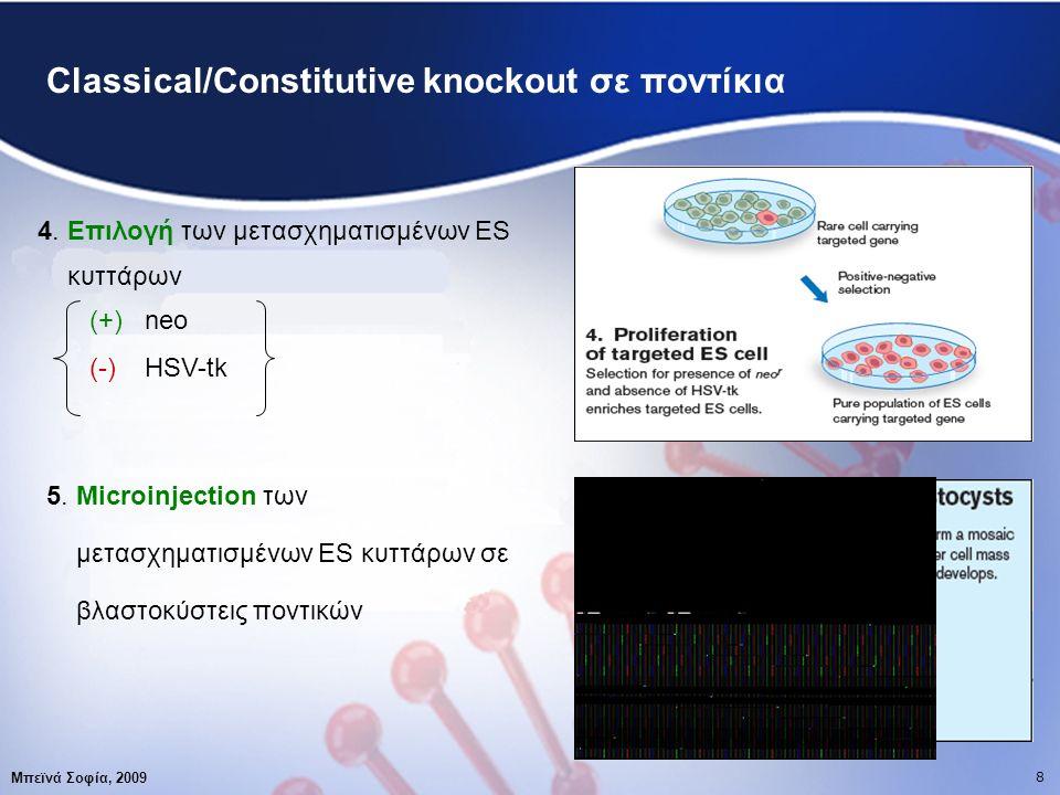 19 Βιβλιογραφία Μπεϊνά Σοφία, 2009 1818 Zhang C., Kitsberg D., Chy H.,et.al., Transposon-mediated generation of targeting vectors for the production of gene knockouts , Nucleic Acids Research, 33(3):e24, 2005 http://en.wikipedia.org/wiki/Gene_targeting http://www.vegabiolab.com http://www.genome.gov http://genome.wellcome.ac.uk http://www.biotech.wisc.edu http://www.bio.purdue.edu/research/groups/tmcf/tmcfko.htm http://ko.cwru.edu/services/targeting.html http://www.cgm.northwestern.edu/